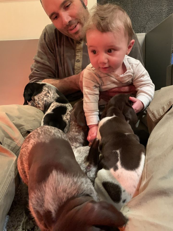 Baby Cuddles with puppies